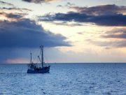 Украинские рыбаки могут лишиться рыбного промысла на Азовском море