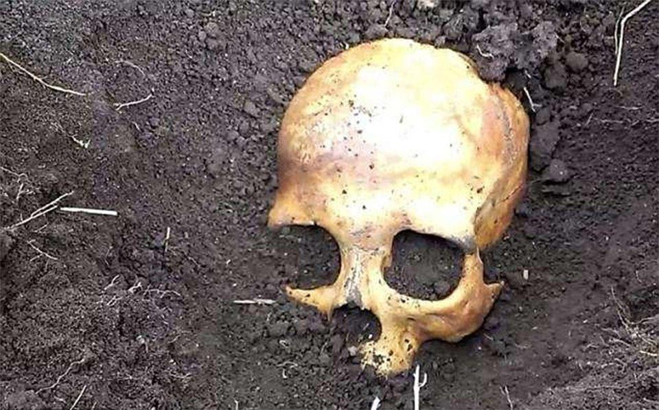 скелет, Каховское водохранилище, найден
