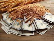 Экспорт зерновых с Херсонщины могут запретить