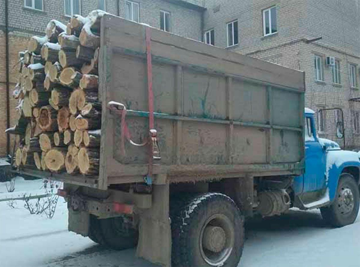 На Херсонщині поліція затримала водія з деревиною без документів