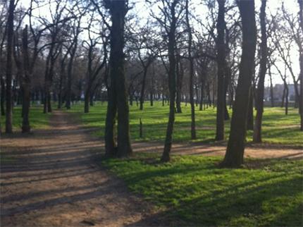Університетський парк у Херсоні стане ще комфортнішим