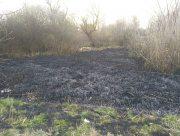 В Херсонской области задержали поджигателя плавней