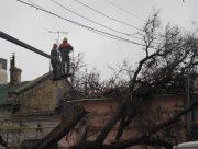 Спиляне комунальниками дерево залишило колишній райцентр на Херсонщині без світла
