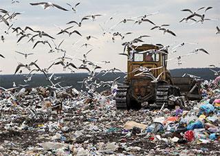 Антимонопольщики разбираются с мусором на Херсонщине
