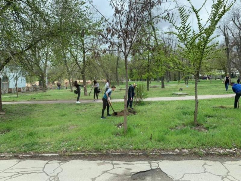 Херсонці активно долучаються до озеленення міста