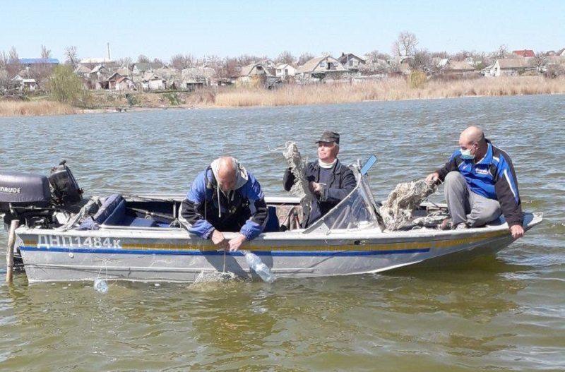 рибалки, патруль, риба, гнізда, артющик