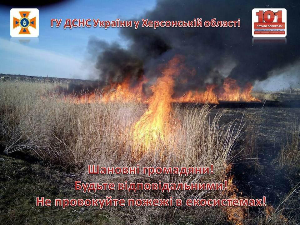сухостій, пожежа, рятувальники