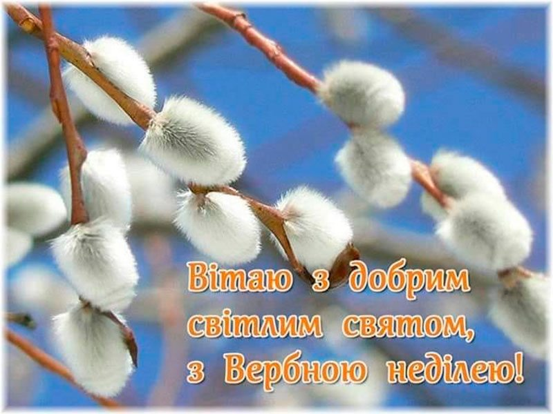 Свято, привітання, Колихаєв