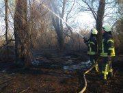 Херсонские спасатели 7 часов тушили пожар камыша на Карантинном острове