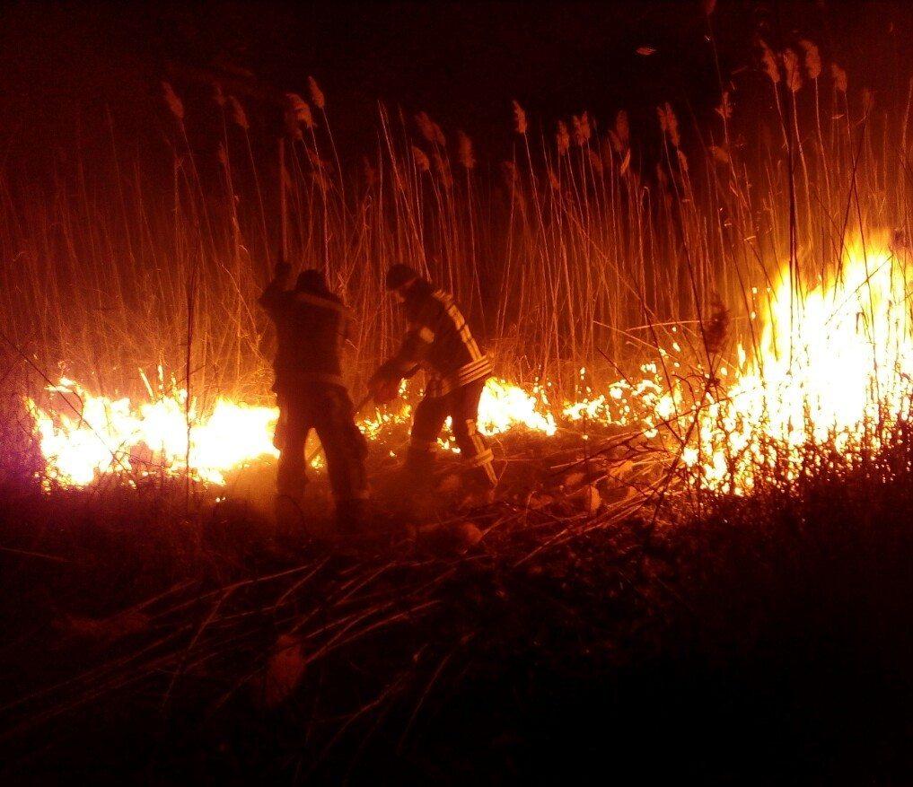 плавні, пожежі, рятувальники