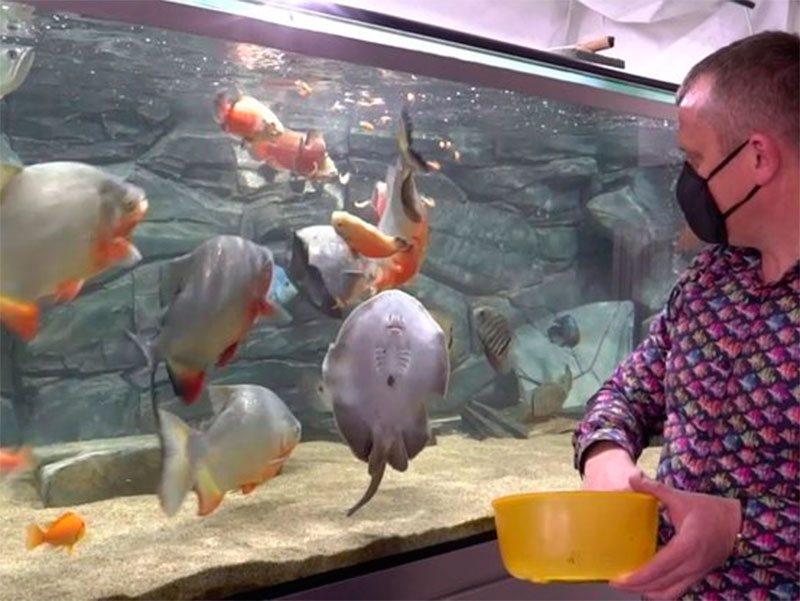 Херсонщна, риби, дослідження