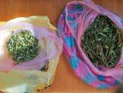 На Херсонщине задержали банду наркоторговцев