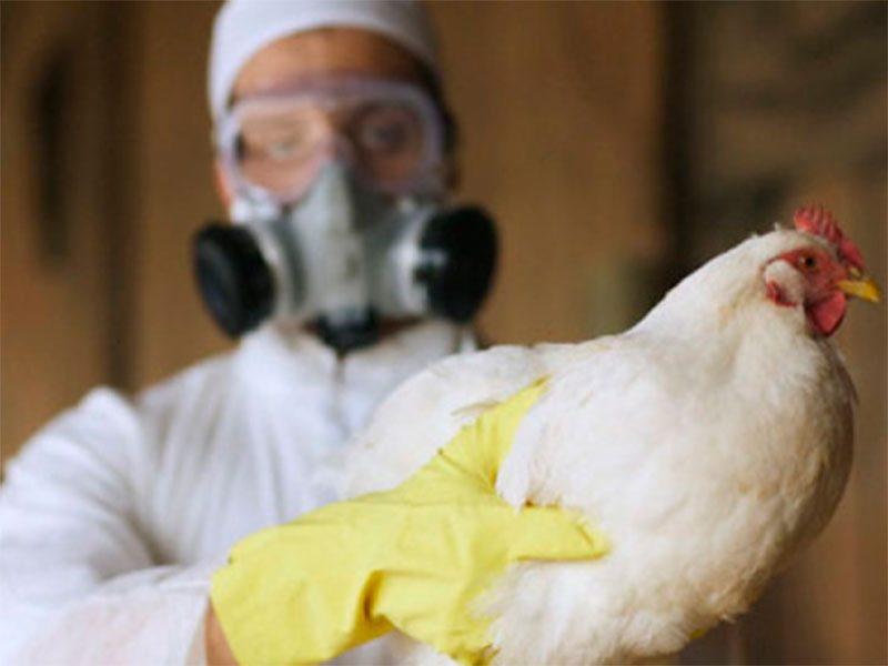 Херсонщині загрожує ще одна епідемія
