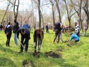 Майже 200 молодих саджанців поповнили екосистему Херсонського державного університету