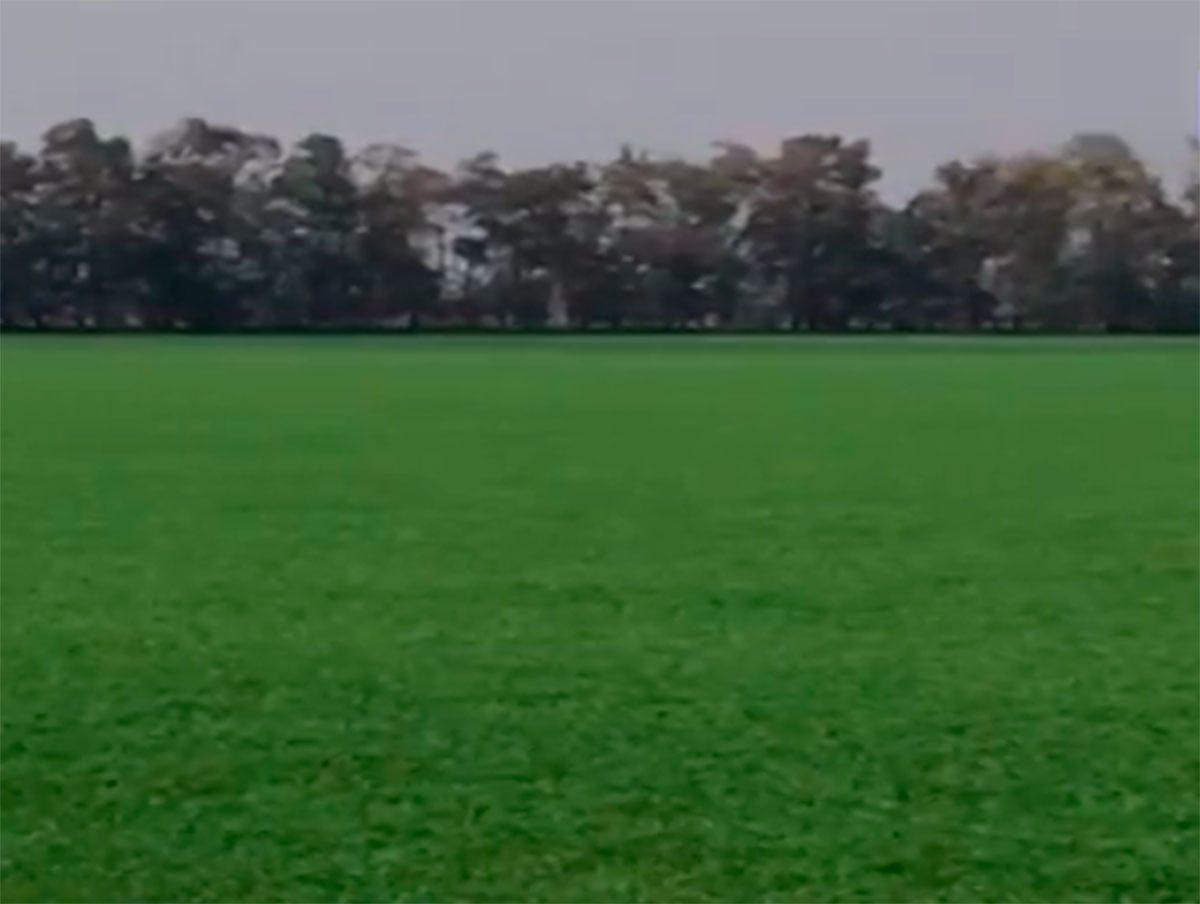 Херсонщина, відео, урожай