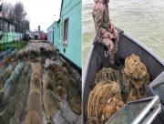 Херсонские пограничники спасли от браконьеров десятки тысяч рыб