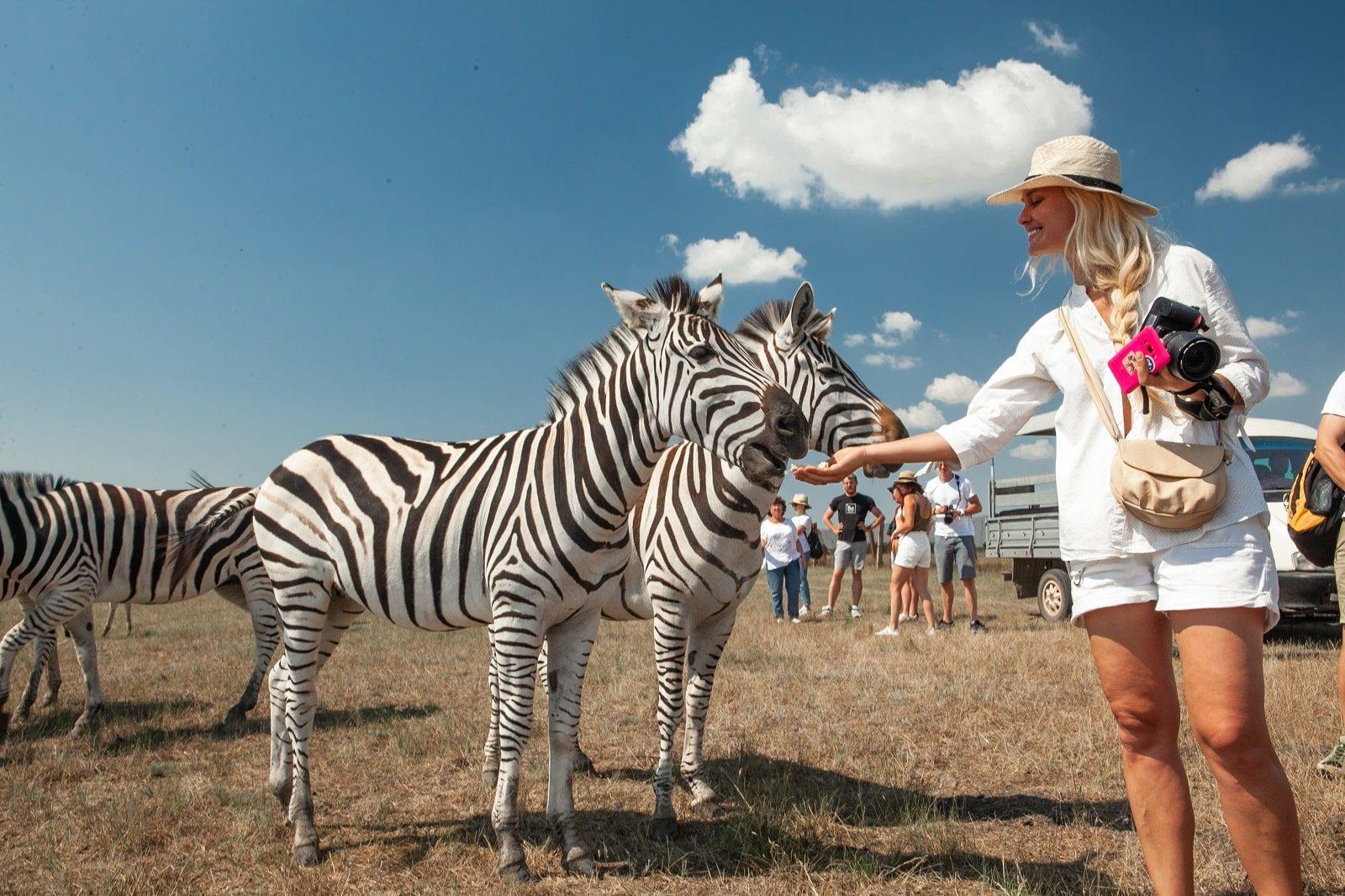 природні парки, біосферні заповідники, туризм