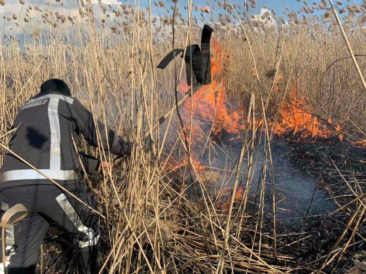 Херсон,пожар камыша,пожарные
