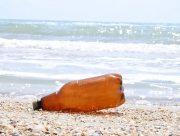 Лісівники Херсонщини очистили Джарилгач  від сміття