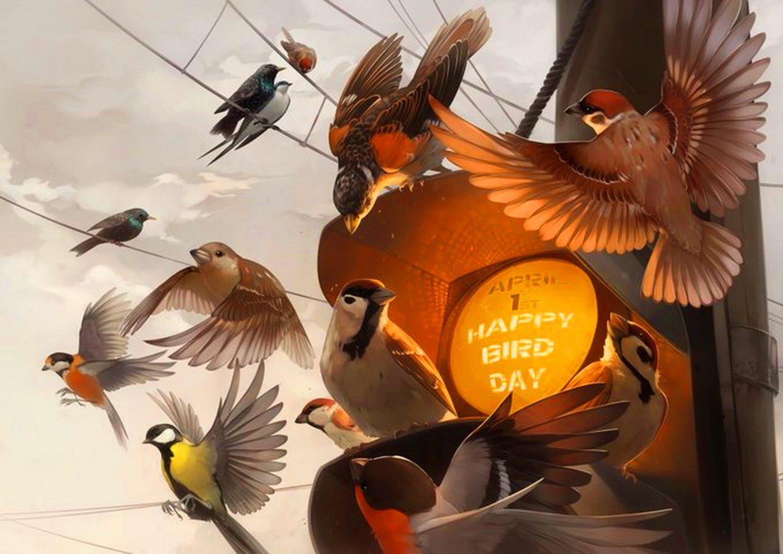 Херсон,школьники,птицы