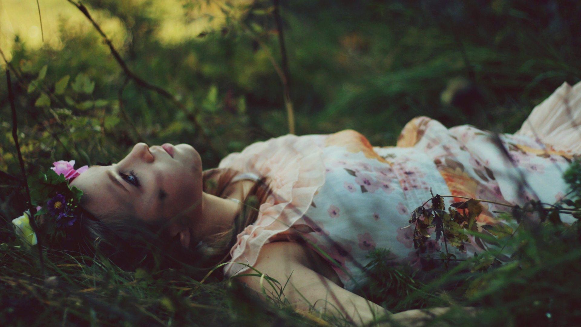 верба, ветки, дерево, падение