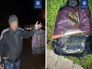 В Херсоне задержали бездомного, вырезавшего кабеля связи