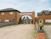 Сафари-парк на Арабатской стрелке в Херсонской области начнёт работу с 1 июня