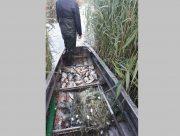 """На территрии национального природного парка """"Нижнеднепровский"""" поймали браконьера"""