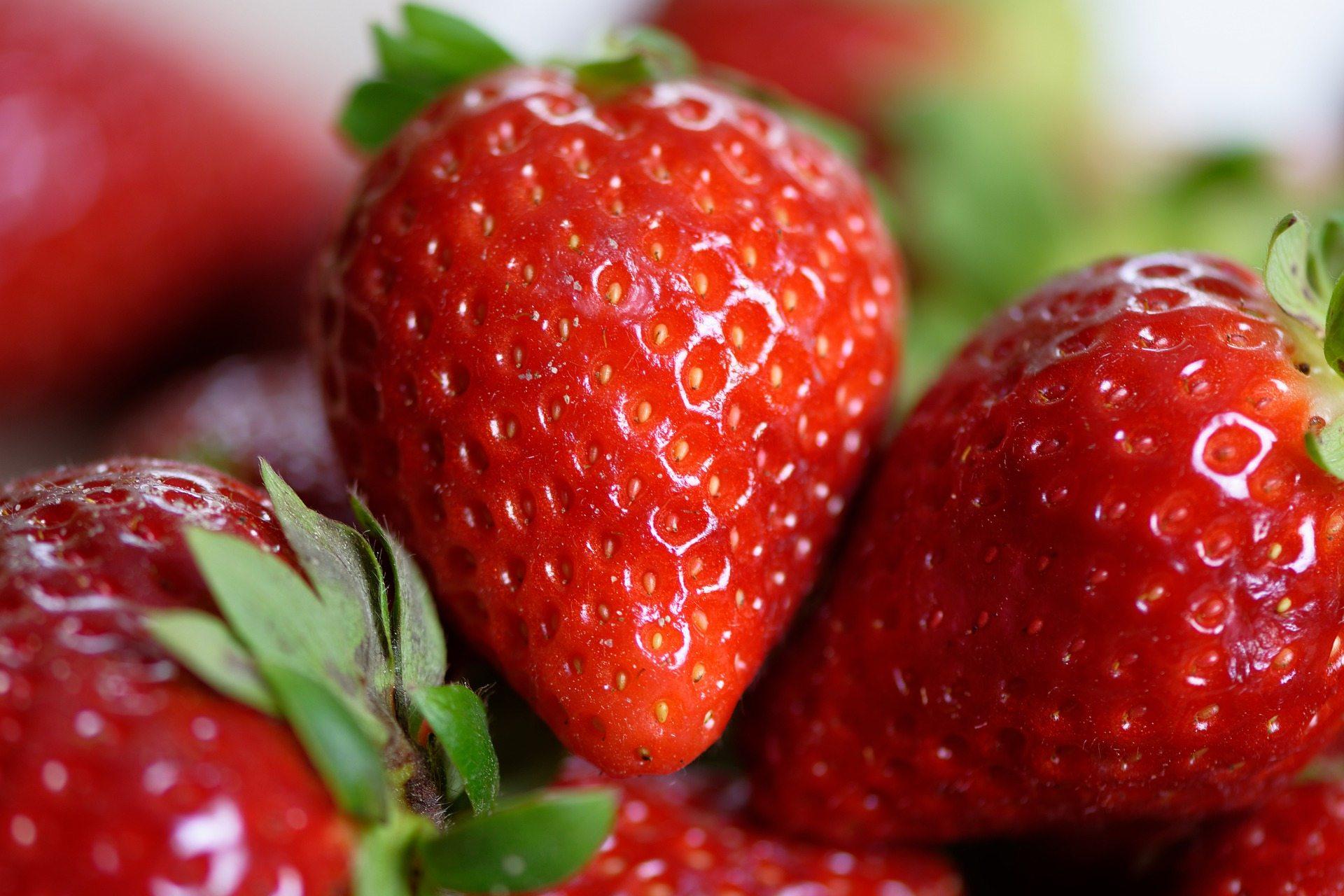 ягоди, дідер, область