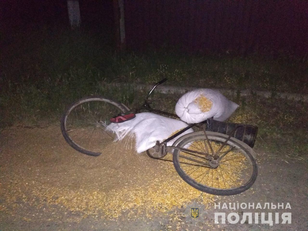 В Херсонской области нетрезвый водитель насмерть сбил велосипедиста