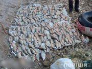На берегу Каховского водохранилища поймали браконьера с крупным незаконным уловом