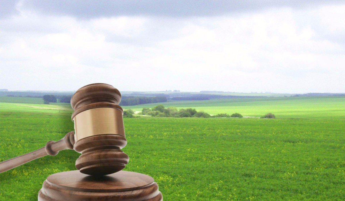 Новая Збурьевка,земля,суд
