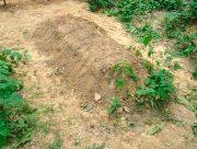 Правоохранители Херсонщины не разглашают место захоронения педофила-самоубийцы