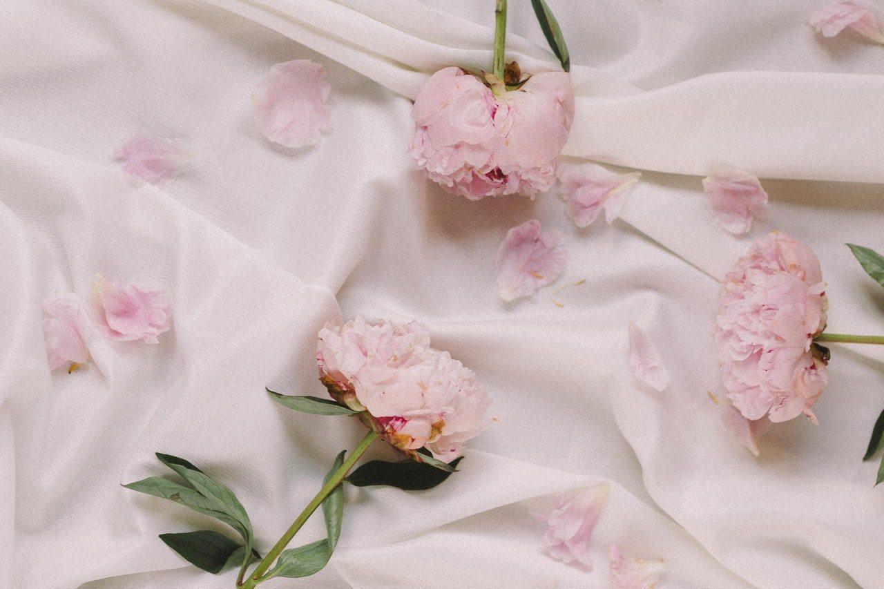 квіти, вибір, сезон