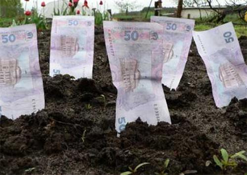 Оренда землі на Херсонщині фермерам вже не по кишені