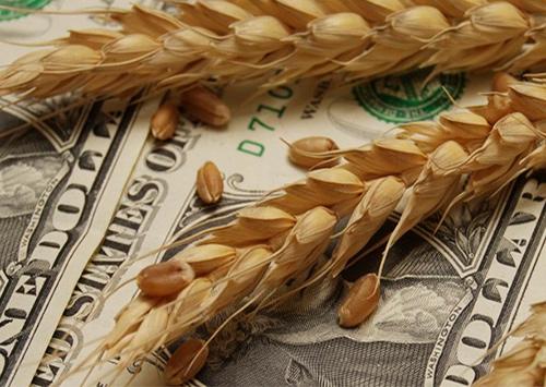 На Херсонщине урожай норовят скупить по дешевке