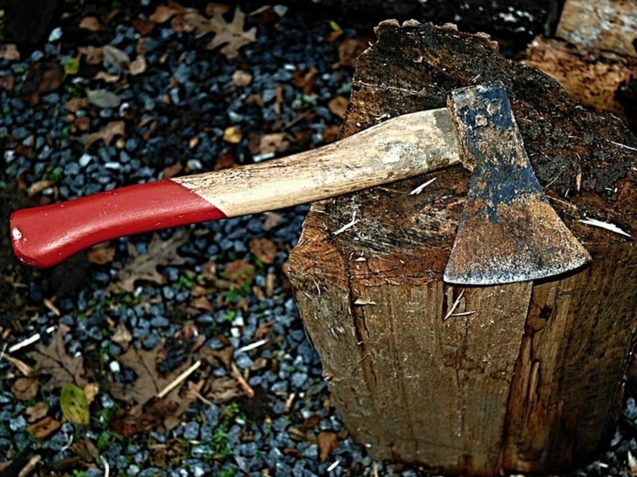 На Херсонщине сельчанин отрубил палец вместе с дровами