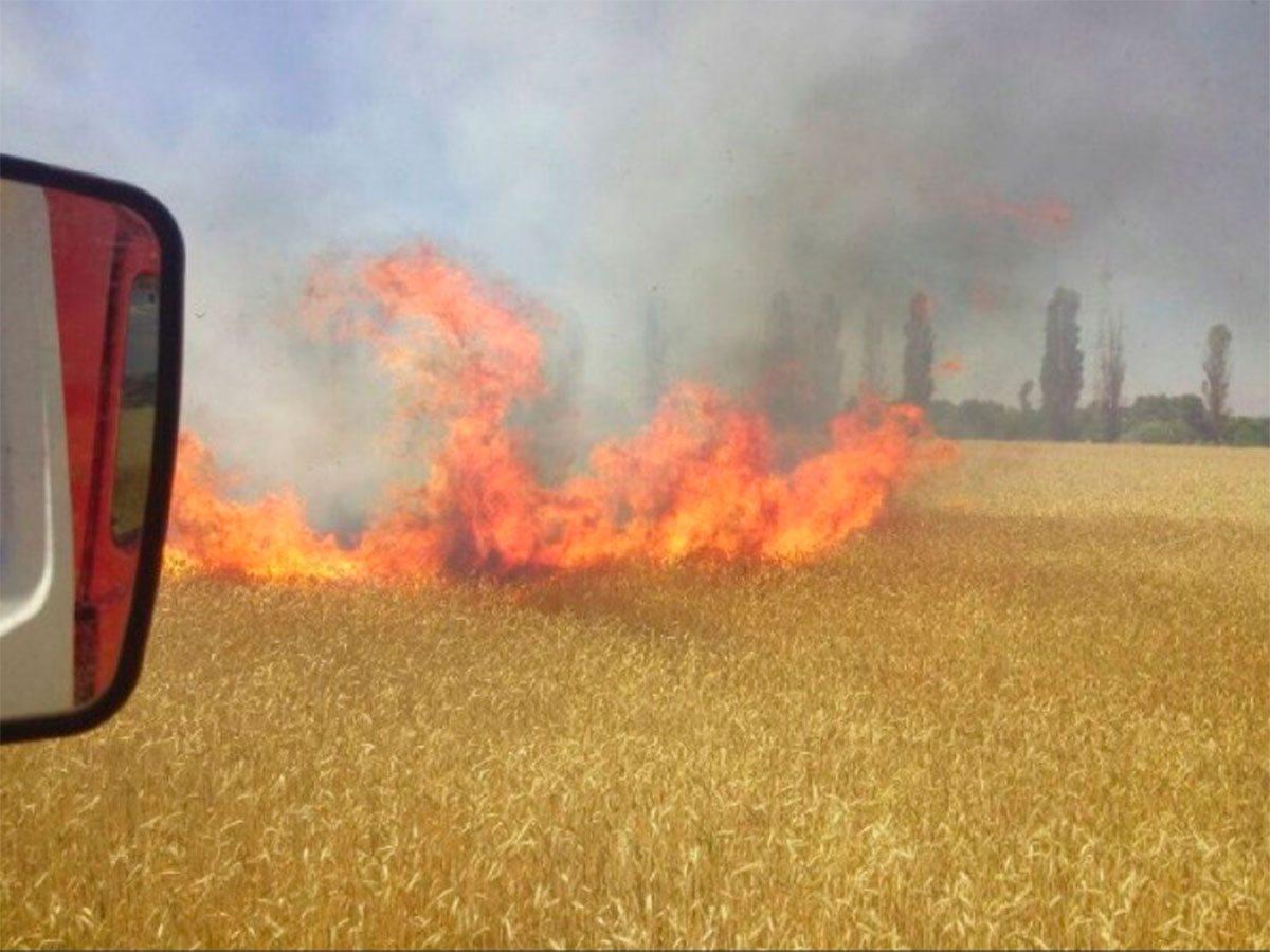 На Херсонщині палає хлібна нива