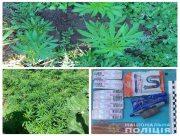 """У жителя Херсонщины нашли посевы конопли и лабораторию по изготовлению наркотика """"крокодил"""""""