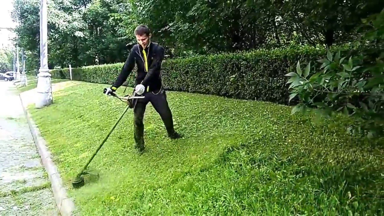В Херсоне депутаты заинтересовались расходованием более миллиона гривен, выделенных на покос травы