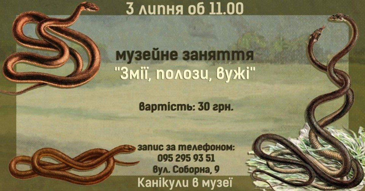 Херсонский краеведческий музей приглашает школьников на музейное занятие о змеях