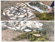 В Херсонской области полиция задержала двух браконьеров