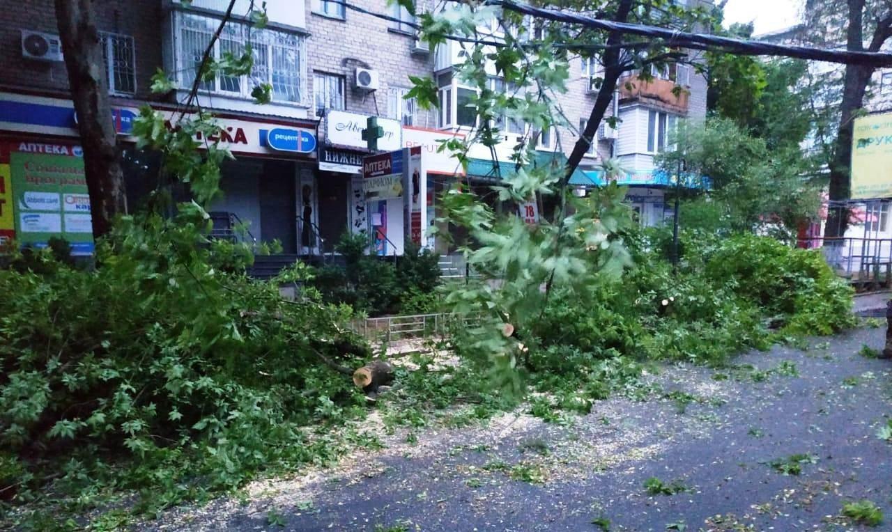 Херсон,упавшее дерево