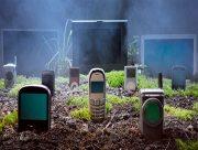 В Херсоне кладбище стало местом преступления