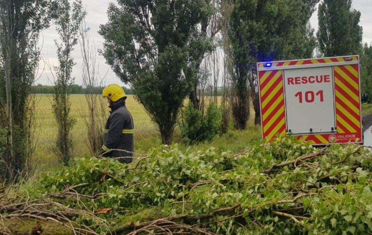 Голопристанский район,упавшее дерево,спасатели