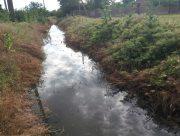 Херсонщиною течуть річки з фекалій