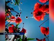 Квітучі локації Херсона