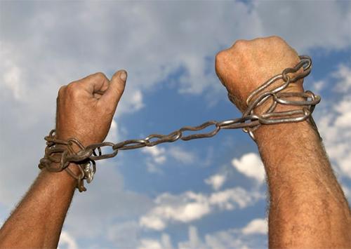 На Херсонщине - рабы напрокат
