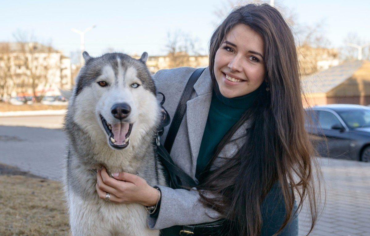 В Херсоне собака спасла свою хозяйку от грабителя