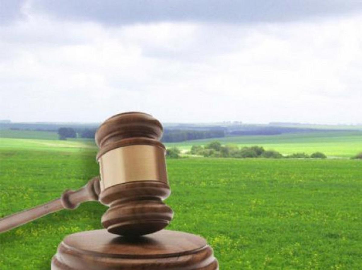 Прокуратура Херсонщины требует вернуть государству земельный участок стоимостью 5,4 млн грн